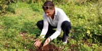 Voluteer Dr. Isabela Planting a Tree at Rau Forest Reserve